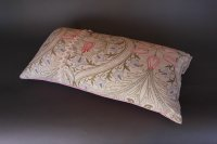 T43 WILLIAM MORRIS CUSHION